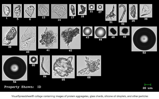 Protein agglomerates and contaminants FlowCam