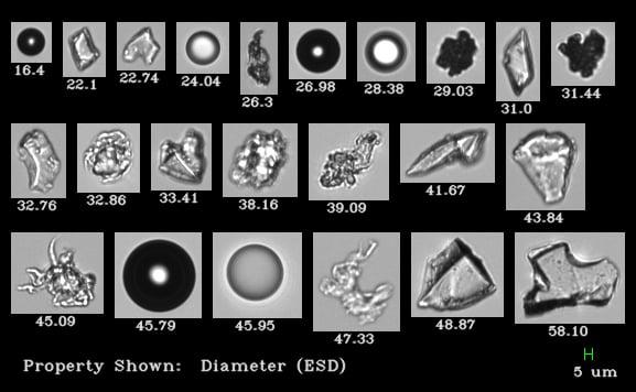 FlowCam 8000 Biopharm Collage 6.2.20 (2)