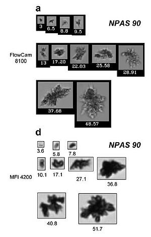 FlowCam 8100 protein images compared to MFI 4200