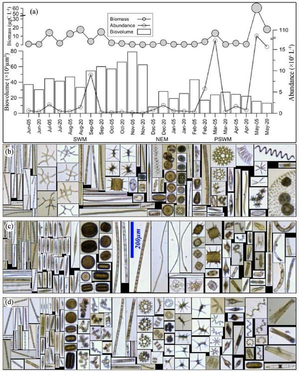 Karnan Figure 3 - FlowCam images
