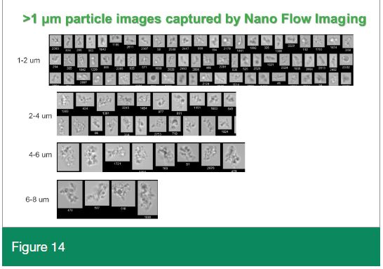 Nano-Flow Imaging collage file image from Biopharma Asia August 2020