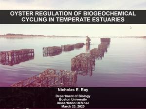 Nick Ray Dissertation Title slide