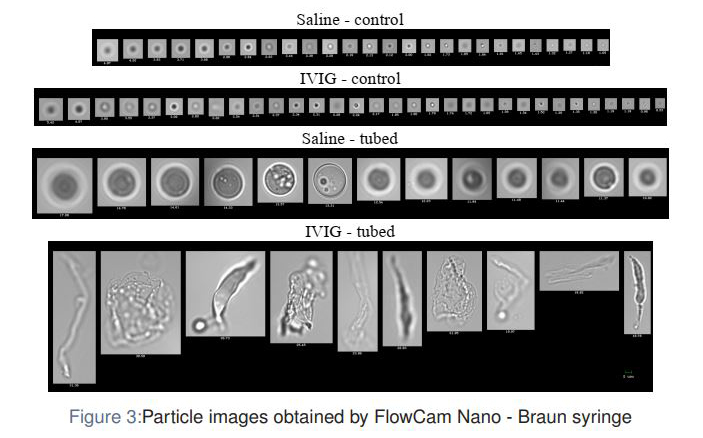 Particle imaged by FlowCam Nano Braun syringe