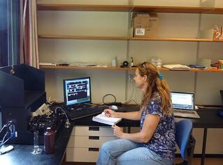 Stella Berger using FlowCam particle analyzer to quantify phytoplankton