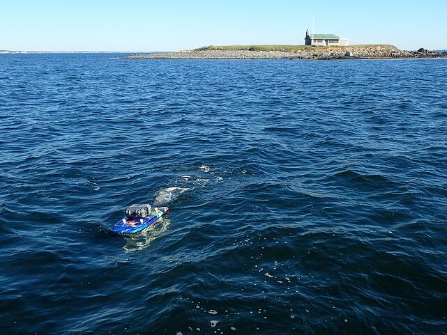 Plankton sucker in action near Ram Island off the coast of Maine